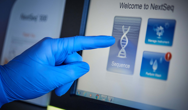 Looking at DNA sequencing on screen
