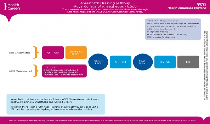 Training pathway for anaesthetics