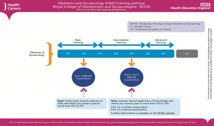 Obstetrics and gynaecology training pathway