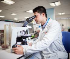 Ravind Singh Bhangal, Biomedical scientist